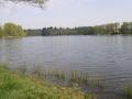 grd étang de St-Saud (2)