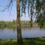 grd étang de St-Saud