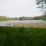 le grd étang de St-Saud (3)