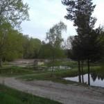les pècheries du Grd étang de la Gourgousse - St-Saud