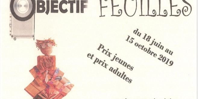 CONCOURS PHOTOS :OBJECTIF FEUILLES